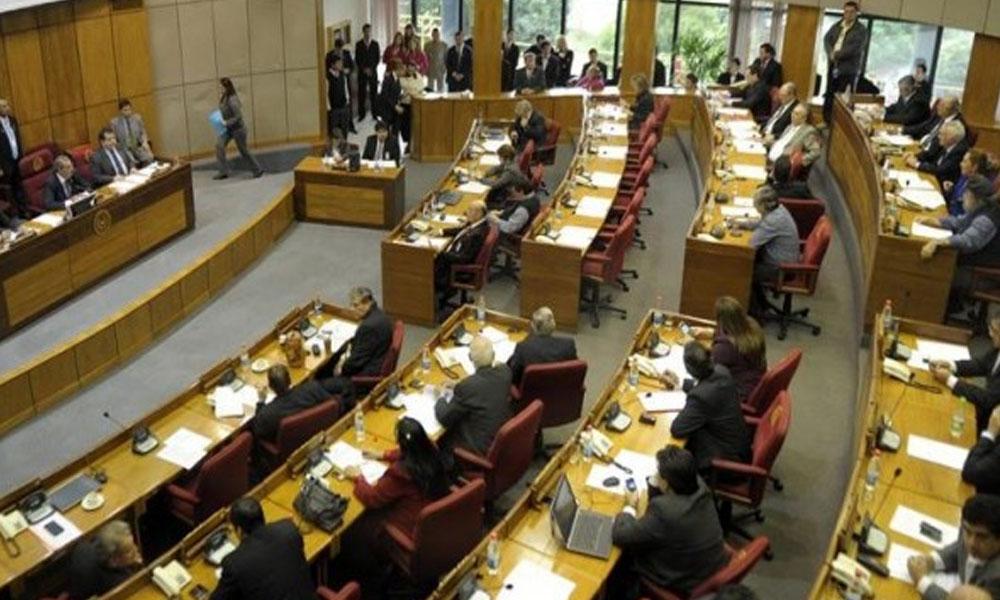 La Cámara de Senadores.  //infolatam.com