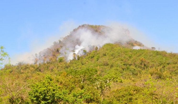 Unas 40 hectáreas ya fueron consumida por las llamas. Foto://Abc.com.py.