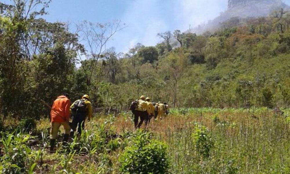 Los bomberos combaten el fuego con agua en mochilas. Foto://Abc.com.py.