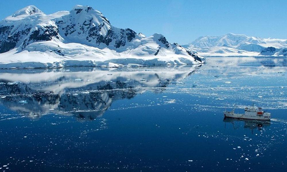 Crean la mayor reserva marítima del mundo en la Antártida