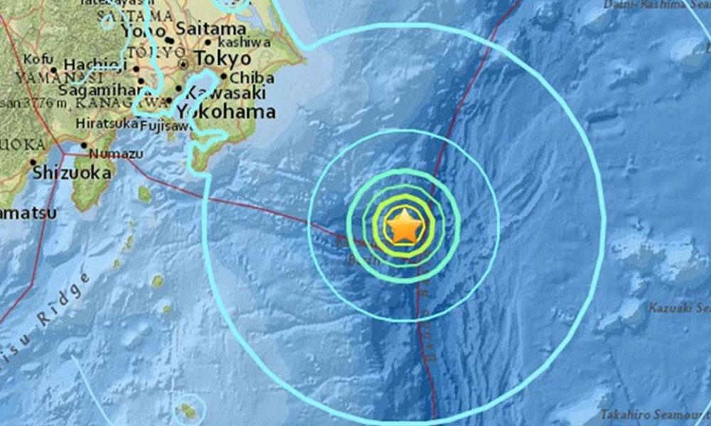 Japón: Terremoto de magnitud 6,5 sacudió la región oriental de Kanto