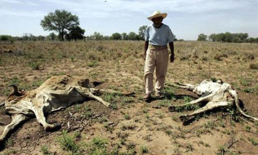 Las condiciones de este verano para los próximos meses, pueden tender a la sequía Foto: Referencia - Archivo de Última Hora