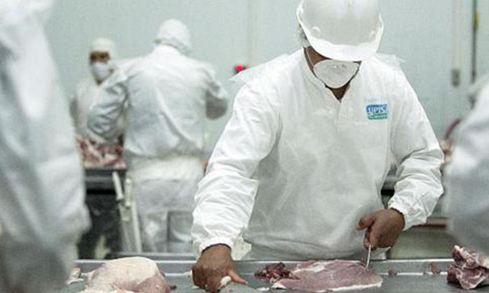 Comercio exterior. Paraguay envía el 86% de la carne porcina a Rusia y Liberia, según datos de Senacsa. Foto://Ultimahora.com.