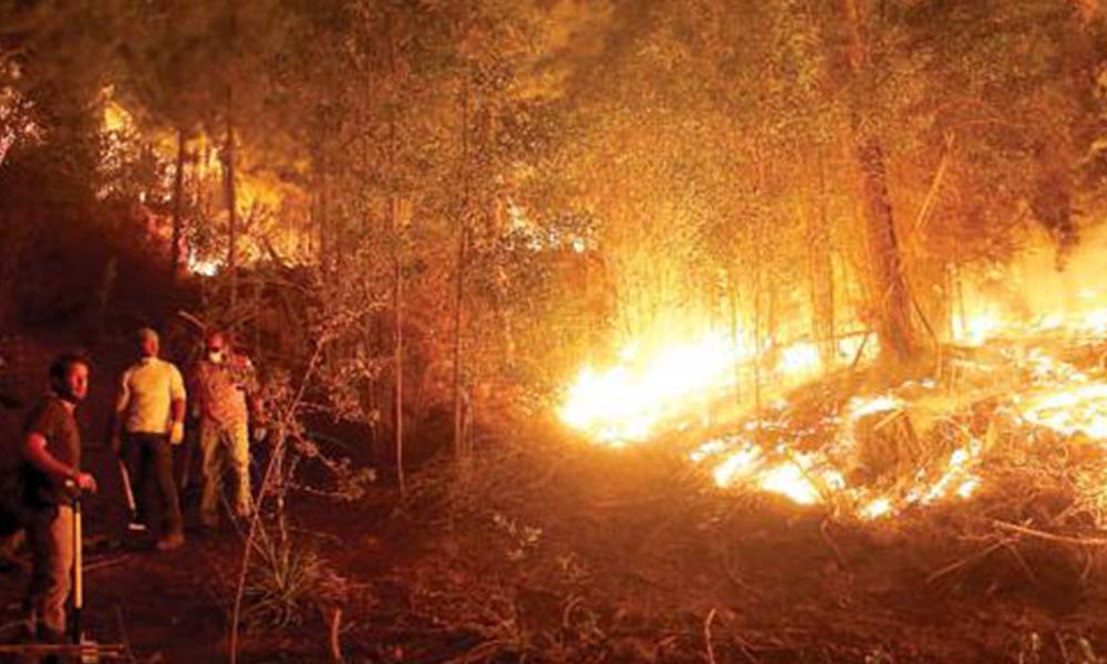 Fatal. El fuego sigue en Chile pese a la tarea de bomberos. Foto://Ultimahora.com