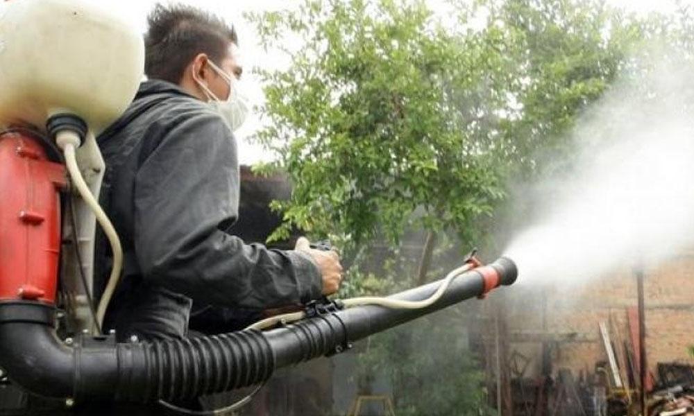 Cinco casos de dengue confirmados en Coronel Oviedo