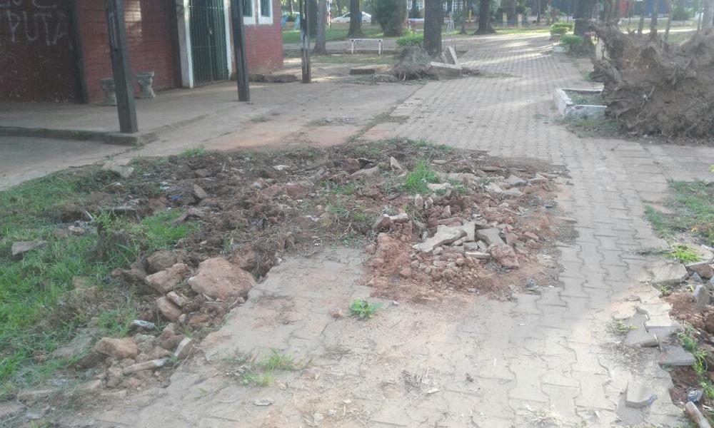 Deplorable estado de abandono de la plaza San Roque de Coronel Oviedo