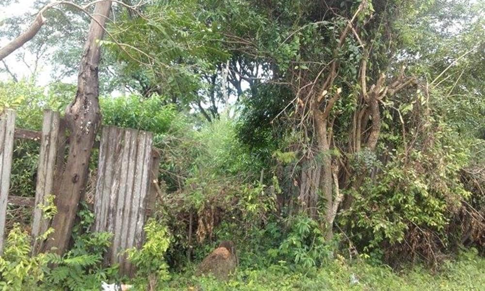 Vecinos preocupados por baldío abandonado