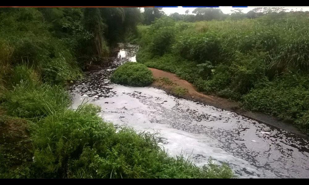 Cause contaminado con nauseabundo olor afecta a pobladores de Mariano Roque Alonso.