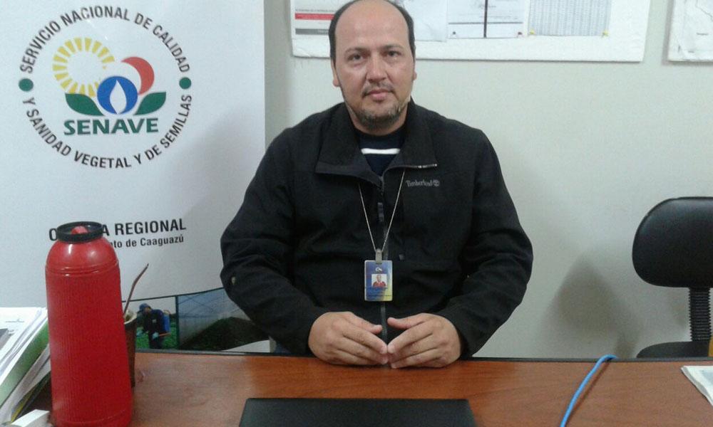 Jefe Regional del Servicio Nacional de Calidad y Sanidad Vegetal y de Semillas (Senave) Ing. Carlos Delgado. //OviedoPress